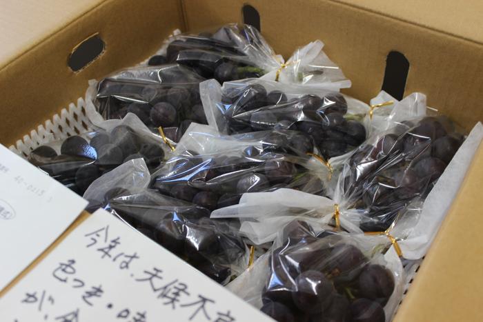 果物王国 福島